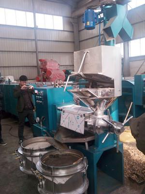 顺丰榨油机,菜籽榨油机,小型榨油机,新型榨油机,全自动榨油机厂家