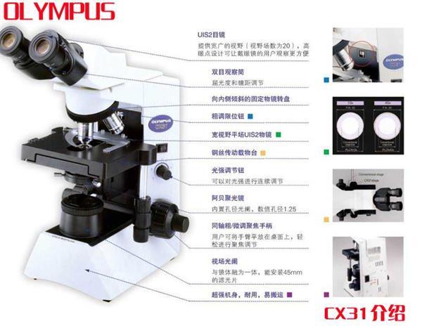 物显微镜与先进的
