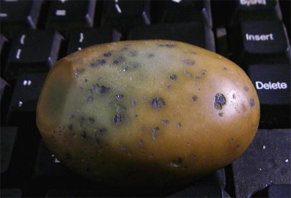 铁陨石夜明珠原石图片_怎样鉴别夜明珠橄榄石铁陨石原石中科商务网
