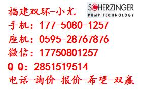 Scherzinger油泵