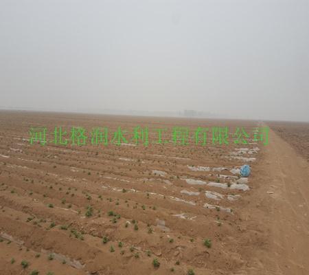 九原 精品节水灌溉