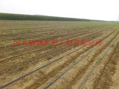 大田节水灌溉塑料滴水带 卧龙塑料滴水带设备