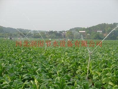 福建茶园节水灌溉设备