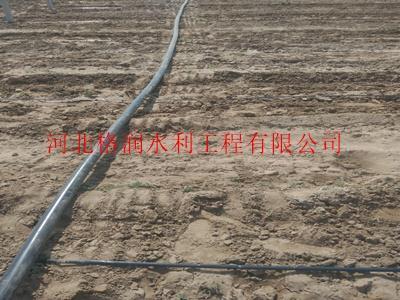 聚乙烯软带 节水灌溉工具 东河滴灌滴头