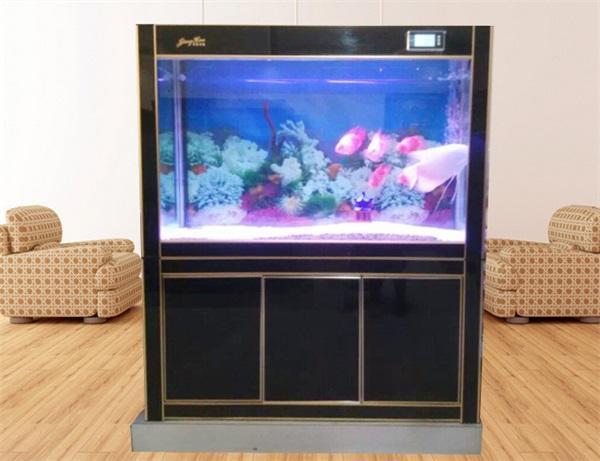 自制鱼缸步骤图片