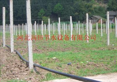 灌水管 石家庄节水灌溉设备 云同盟