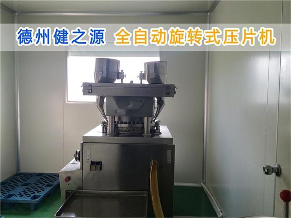 压片生产设备_海洋之神590官方网站