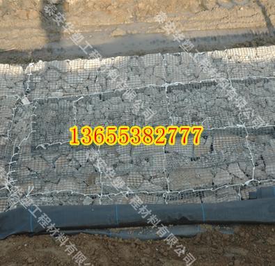 台州钢塑土工格栅 厂价直销