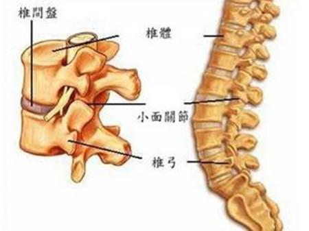 腰椎间盘突出用中医外贴的方法真的能治愈吗