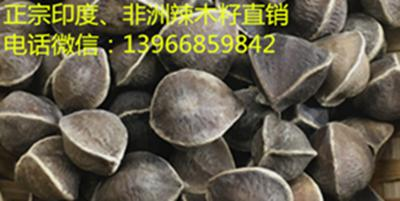 正宗辣木籽价格多少钱一斤,辣木籽怎么吃功效好,适合哪些人群