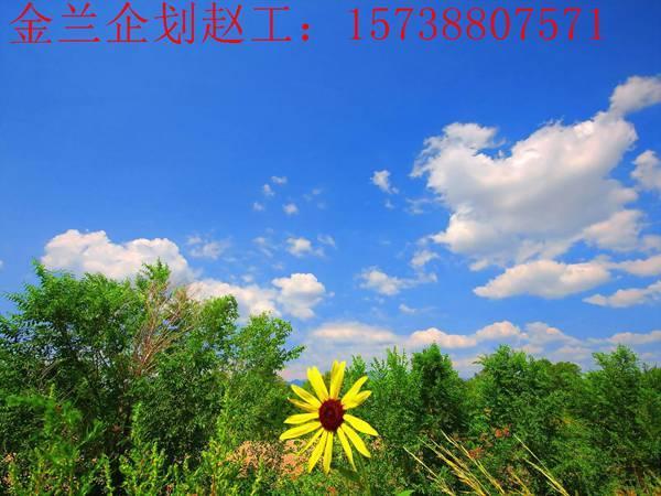 永清县专业编写概规专注11年