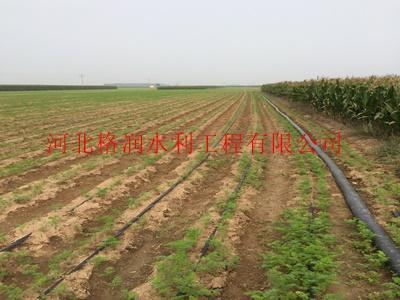 廊坊大田滴灌节水灌溉项目滴水软带型号规格