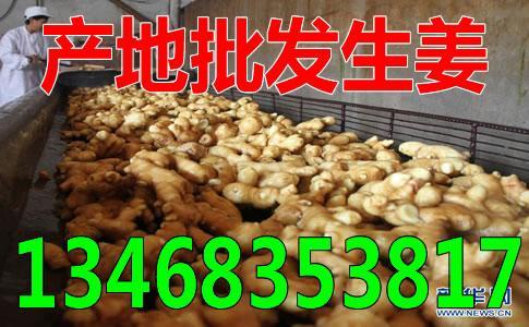 铜陵今天大姜最新价格