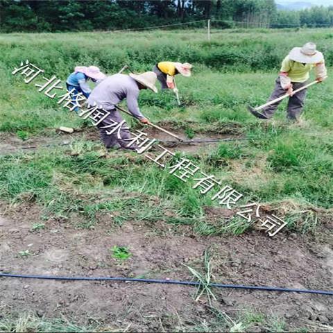 河南果树滴灌滴头价格优惠新乡小管出流生产厂家