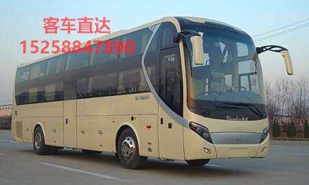 广州到曲阜客车图片//高级豪华客车//15258847890//天天发车