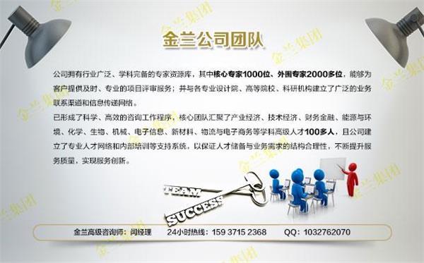 肃宁服务项目申请书资金申请书