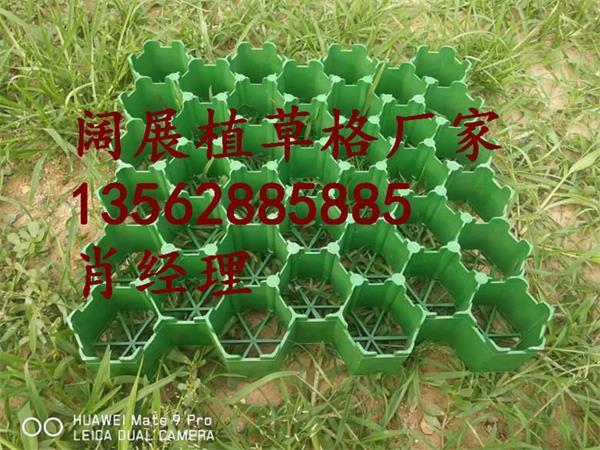 州植�y.+yl_大理白族自治州7公分植草格选阔展工程材料