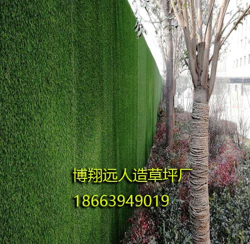 吉林省吉安市风景