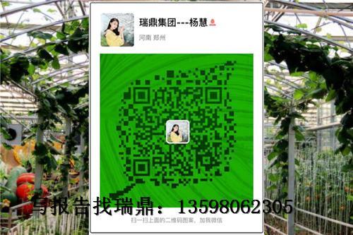 【现代农业园区项目】规划设计方案代写地址图片