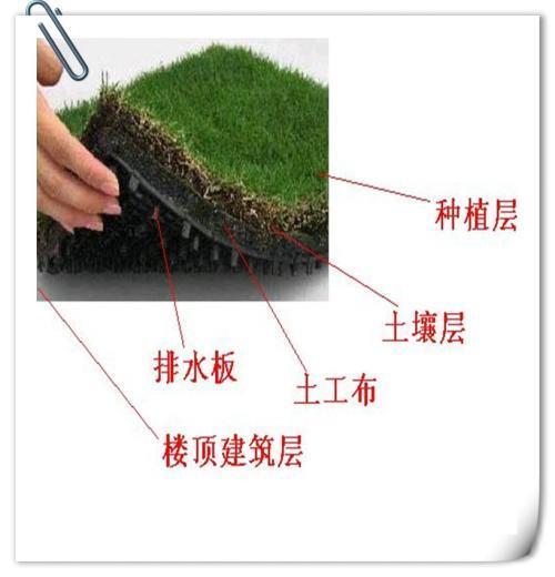 生态排水沟设计目标