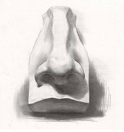 江阴素描培训丨石膏鼻子素描画法步骤图片 鼻子画法教程